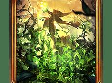 影之诗新绿的加护卡牌怎么样 新绿的加护技能属性图鉴