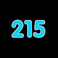 第215关