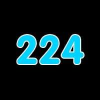 第224关