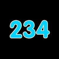 第234关
