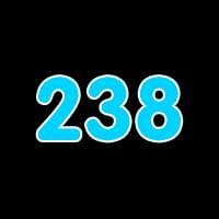 第238关