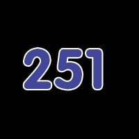 第251关