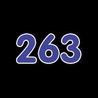 第263关