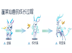 绚烂敦煌版本的全新宠物已经正式加入宠物秘境啦!TA的名字是?