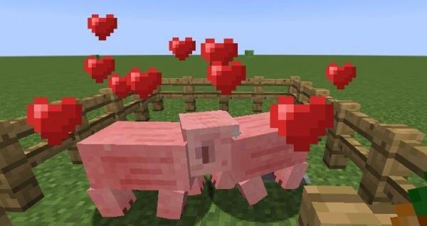 我的世界猪怎么驯服 我的世界猪怎么骑