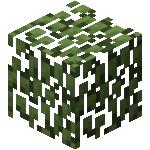我的世界树叶怎么弄