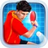 乒乓球冠军赛