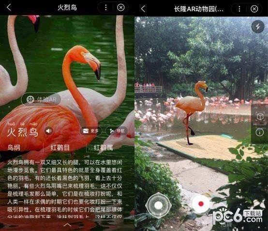 """首页 微信小程序 交通旅游 → 长隆ar动物园     未来,""""长隆ar动物园"""""""