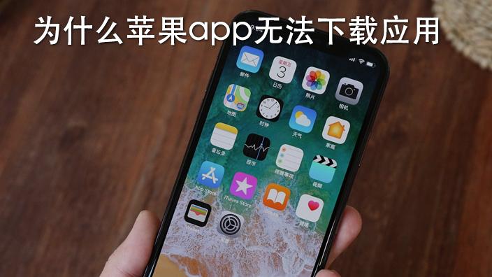 为什么苹果app无法下载应用